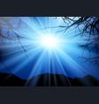 tree landscape at night vector image