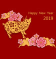 zodiac pigs chinese new year picture of a pig vector image vector image