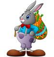 cartoon rabbit carrying a basket full of carrots vector image