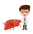 cute funny smiling doctor and healthy happy liver vector image vector image