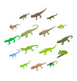 lizard icons set isometric 3d style vector image vector image