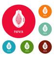 papaya icons circle set vector image