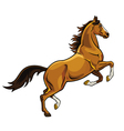 rearing brown horse vector image vector image