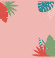 simple tropical palm and motstera leaves natural vector image vector image