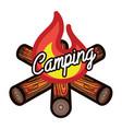 color vintage summer camp emblem vector image