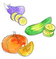 drawing pumpkin vector image vector image
