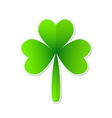 three leaf green clover in cartoon style lucky vector image