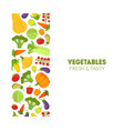 vegetables fresh and tasty banner template design vector image vector image