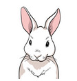 rabbit portrait isolated vector image vector image