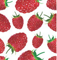 seamless background with raspberry vector image vector image