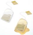 tea bag vector image vector image