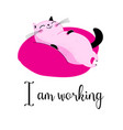 a lovely funny cat vector image vector image