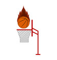 isolated basketball ball on a net vector image vector image