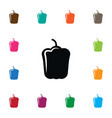 isolated bulgarian bell icon sweet pepper vector image