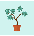 money tree vector image vector image