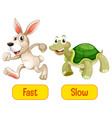 opposite adjectives words with fast and slow vector image vector image