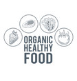 organic healthy food hand draw vector image vector image