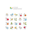 set line icons herbs vector image