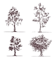 Set of four sketches trees vector image vector image