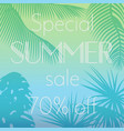 special summer sale text vector image
