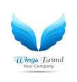 Wings blue logo template business icon Corporate vector image vector image