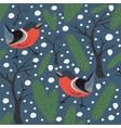 bird seamless pattern bullfinch birds vector image
