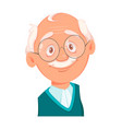 face expression grandfather smiling vector image vector image