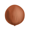 full and unpeeled realistic hazelnut close vector image