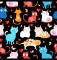 pattern different cats vector image vector image