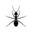 ant design logo ant with various shapes and vector image vector image