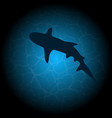 blue water shark silhouette vector image