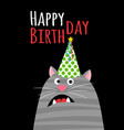 happy birthday cat card vector image
