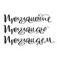 invitation text handwritten calligraphy vector image vector image
