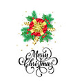 merry christmas greeting card new year gift vector image