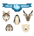 Polar Animals Set vector image vector image