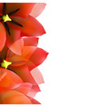 Red Tulip Border With Water Drops vector image vector image