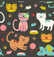 seamless pattern with colorful cats vector image