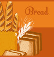 fresh and delicious breads vector image vector image