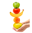 Hands holding a pyramid of healthy fruit Diet vector image vector image