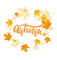 handwriting word autumn vector image vector image