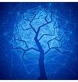 Mystic tree vector image vector image