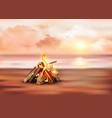 bonfire on sandy shore vector image