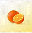 realistic half cut and whole orange vector image