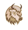 stylized head of a buffalo with the horns vector image