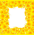 yellow canna indica - canna lily indian shot vector image vector image
