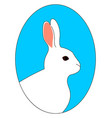 white rabbit on white background vector image vector image