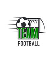 modern sign for football league vector image