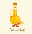 groundnut or peanut oil in bottle or jar near nut vector image vector image