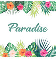 paradise tropical background vector image vector image
