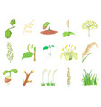 plant icon set cartoon style vector image vector image